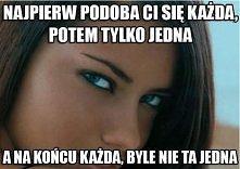 true.jpg