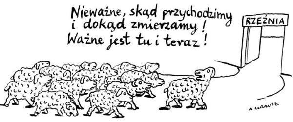 Kiedy baran prowadzi stado do rzeźni